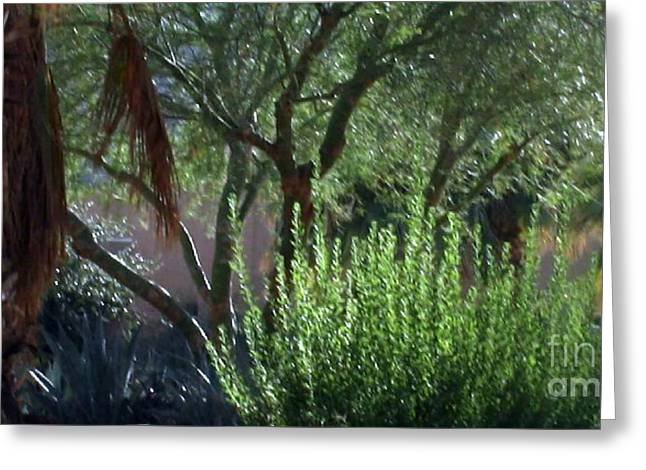 Digital Art Greeting Cards - Palm Desert Museum Of Art Greeting Card by Sherri  Of Palm Springs