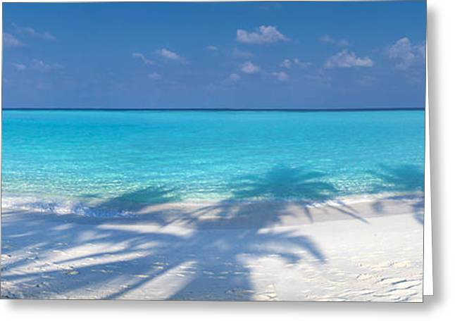 Maldives Greeting Cards - Palm escape Greeting Card by Sean Davey
