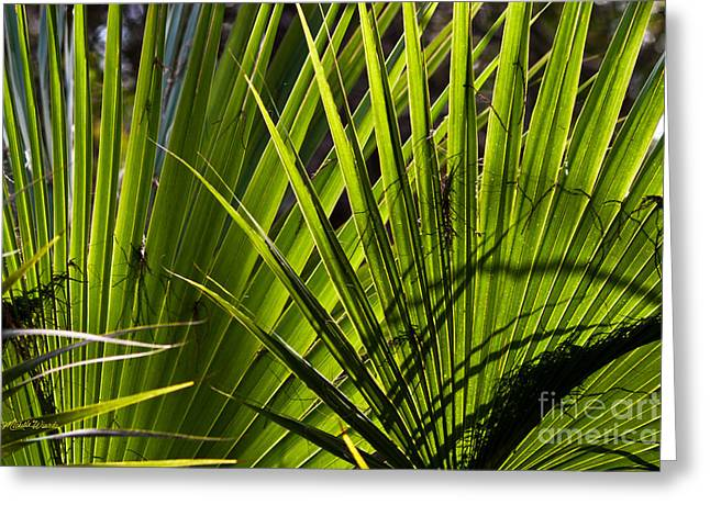 Nature Fusion Greeting Cards - Palm Fusion Greeting Card by Michelle Wiarda