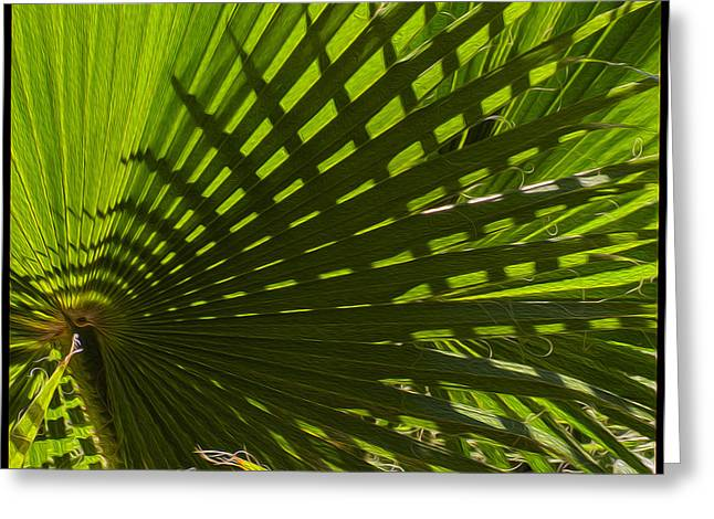 Beauty Mark Digital Greeting Cards - Palm Pattern No.1 Greeting Card by Mark Myhaver