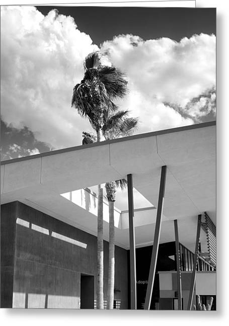 Rescued Animals Greeting Cards - PALM SPRINGS ANIMAL SHELTER PALMS BW Palm Springs Greeting Card by William Dey