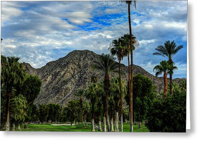 Lush Green Greeting Cards - Palm Springs HDR 011 Greeting Card by Lance Vaughn