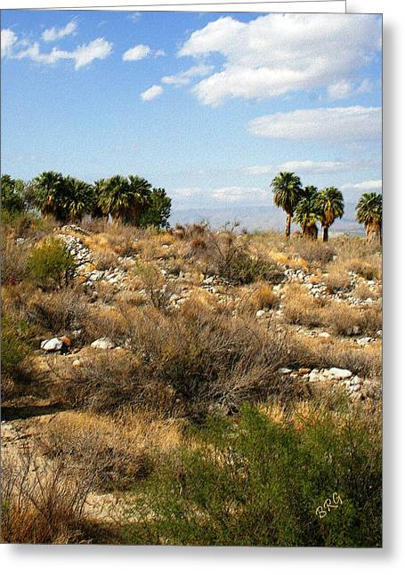 Palm Springs Indian Canyons View  Greeting Card by Ben and Raisa Gertsberg