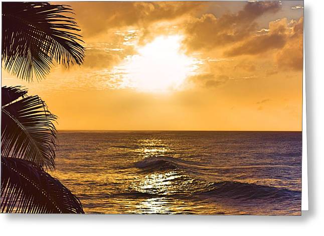 Recently Sold -  - Sunset Framed Prints Greeting Cards - Palm Sunset Greeting Card by Brandy Muses