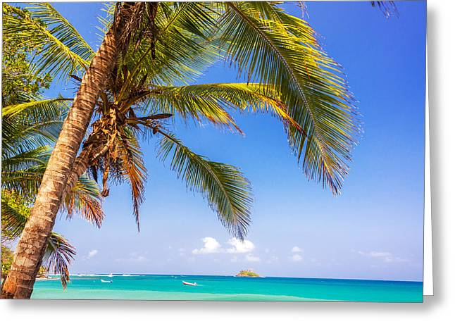 Miel Greeting Cards - Palm Tree and Caribbean Greeting Card by Jess Kraft