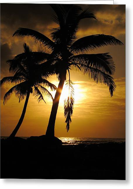 Seaside Greeting Cards - Palm Tree Greeting Card by Andrei Filippov