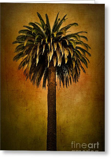 Nosyreva Greeting Cards - Palm tree Greeting Card by Elena Nosyreva