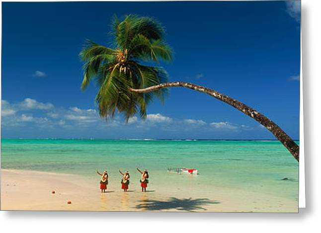 The Trees Greeting Cards - Palm Tree Extended Over The Beach Greeting Card by Panoramic Images