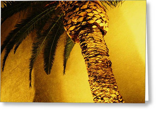 Palm Tree in Vegas. Greeting Card by Yo Pedro