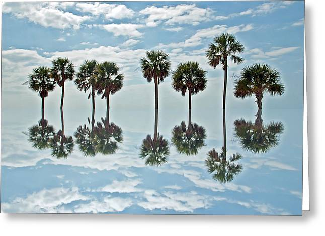 Artistically Altered Greeting Cards - Palm Tree Reflection Greeting Card by Aimee L Maher Photography and Art