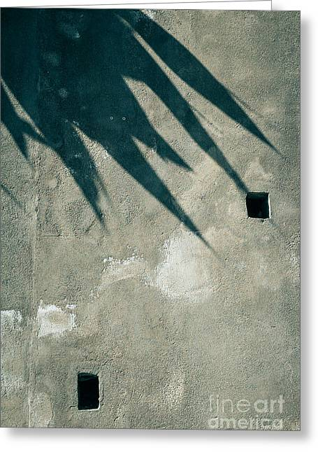 Abstract Palm Trees Greeting Cards - Palm tree shadow on wall with holes Greeting Card by Silvia Ganora