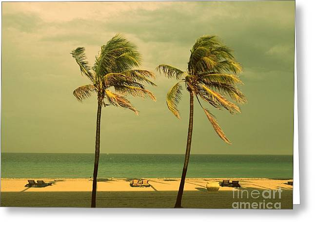 Beach Photos Paintings Greeting Cards - Palm Trees at Hallendale Beach Greeting Card by Patricia Awapara