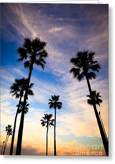 Western Usa Greeting Cards - Palm Trees at Sunset Photo Greeting Card by Paul Velgos