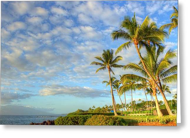 Panoramic Greeting Cards - Palm Trees at Ulua Beach Wailea Greeting Card by Andy Jackson