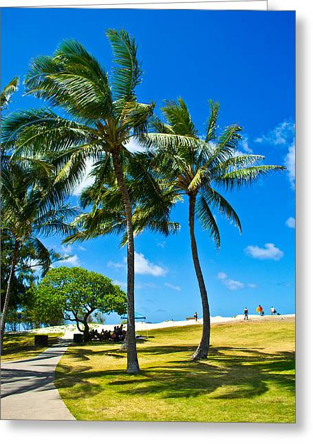 Matt Radcliffe Greeting Cards - Palm Trees in the Park Greeting Card by Matt Radcliffe
