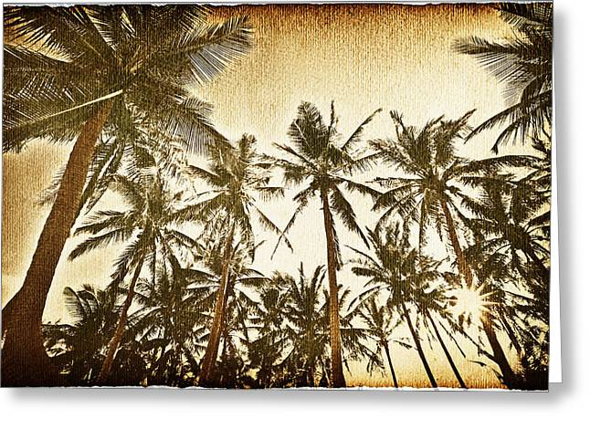 Worn In Greeting Cards - Palm Trees In The Sky Greeting Card by Skip Nall