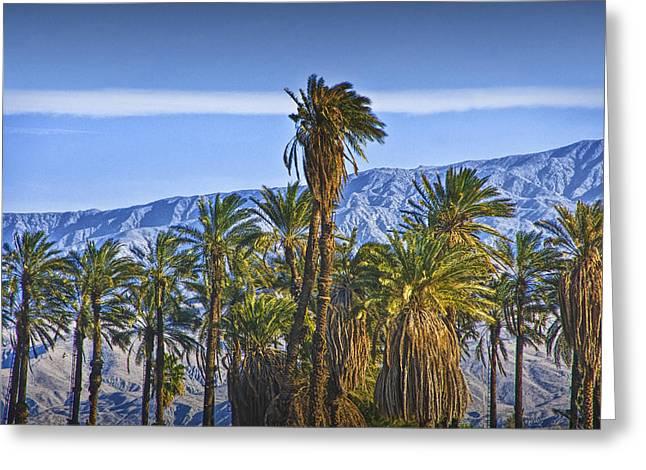 California Art Greeting Cards - Palm Trees near Palm Springs California No. 1373 Greeting Card by Randall Nyhof