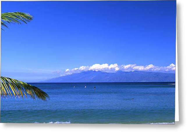 Palm Trees On The Beach, Kapalua Beach Greeting Card by Panoramic Images
