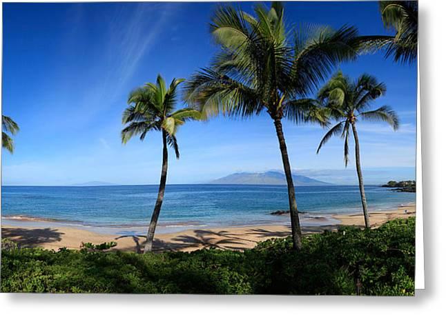 Palm Trees On The Beach, Maui, Hawaii Greeting Card by Panoramic Images
