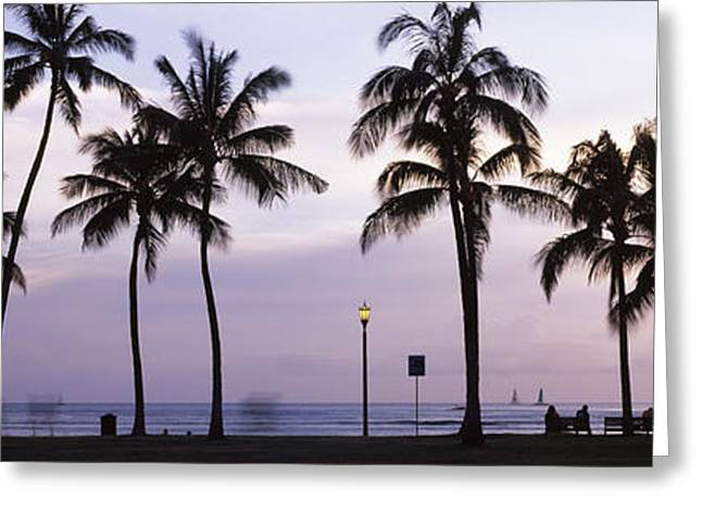 Waikiki Greeting Cards - Palm Trees On The Beach, Waikiki Greeting Card by Panoramic Images