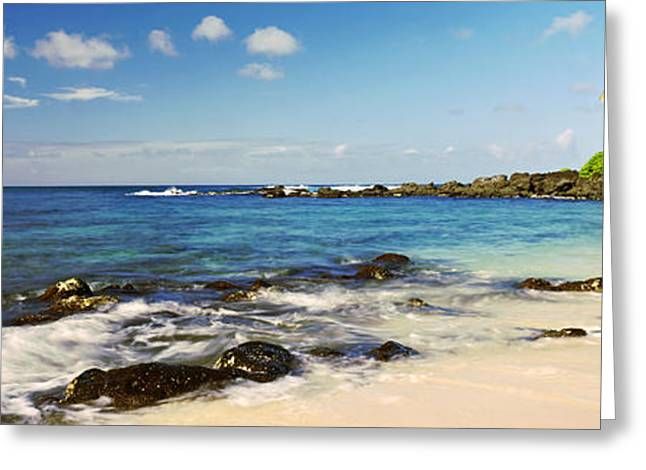 Waimea Greeting Cards - Palm Trees On The Beach, Waimea Bay Greeting Card by Panoramic Images