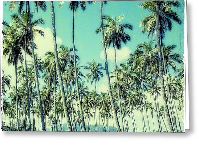 Peaceful Images Greeting Cards - Palm Trees Greeting Card by Susan Stone