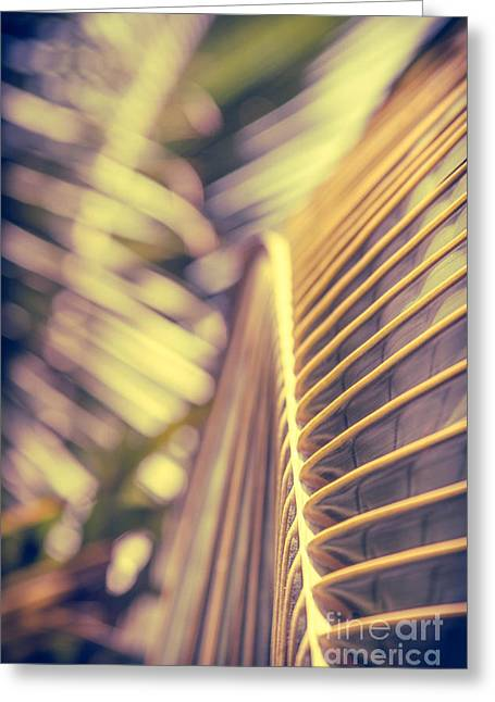Niu Greeting Cards - Palm Tropical Gold Greeting Card by Sharon Mau