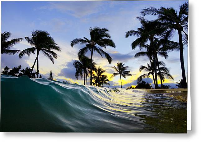 Palm Wave Greeting Card by Sean Davey