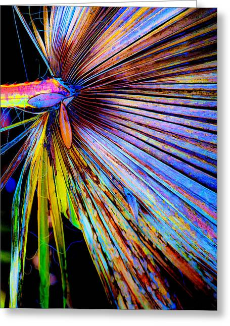 Palmettos Greeting Cards - Palmetto Gone Wild Greeting Card by Stephen Anderson