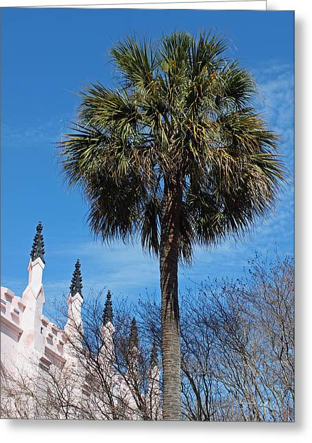 Palmetto Trees Greeting Cards - Palmetto Perfect Greeting Card by Suzanne Gaff