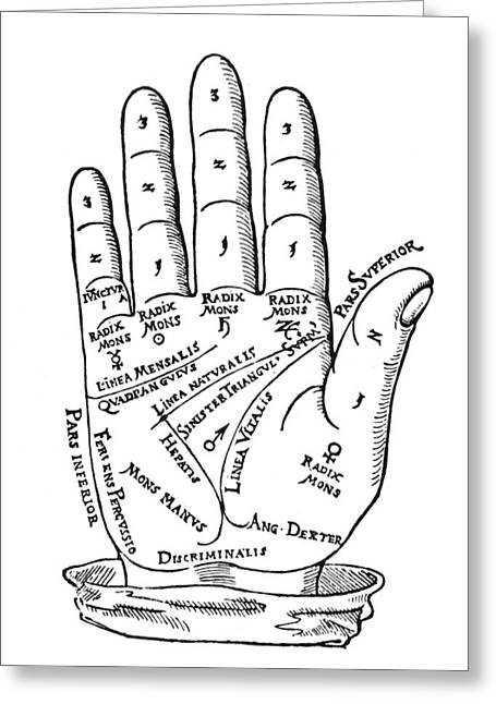 Palmistry Greeting Cards - Palmistry Chart, 1560 Greeting Card by Granger