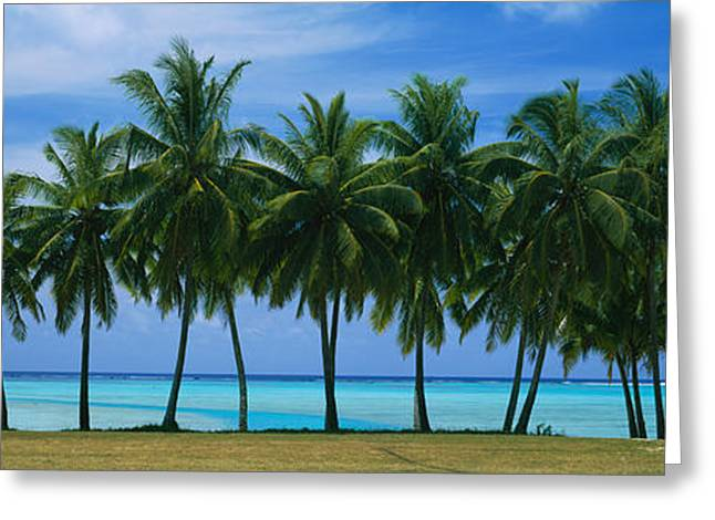 Faint Greeting Cards - Palms & Lagoon Aitutaki Cook Islands Greeting Card by Panoramic Images