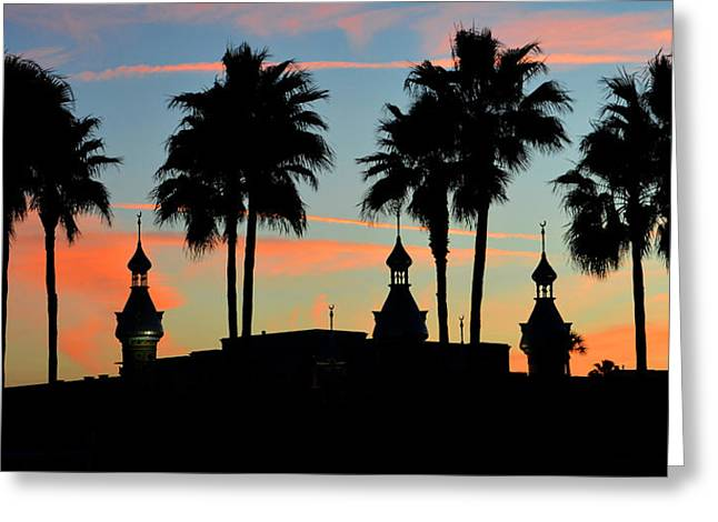 Florida Landscape Photography Greeting Cards - Palms and Minarets Greeting Card by David Lee Thompson
