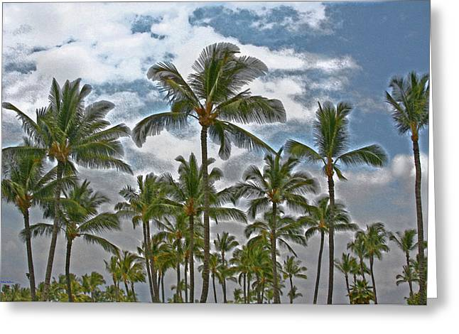 Drypoint Photographs Greeting Cards - Palms and Stormy Clouds Greeting Card by John Orsbun