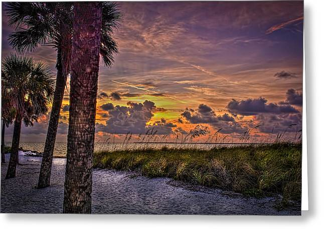 Beach View Greeting Cards - Palms Down to the Beach Greeting Card by Marvin Spates