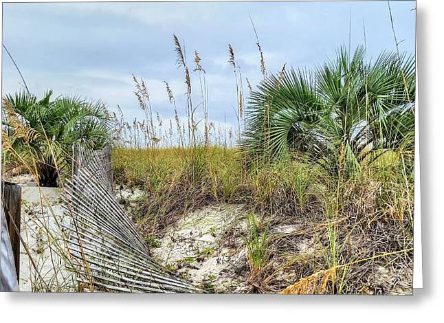 Florida Panhandle Greeting Cards - Palms on Pensacola Beach Greeting Card by JC Findley