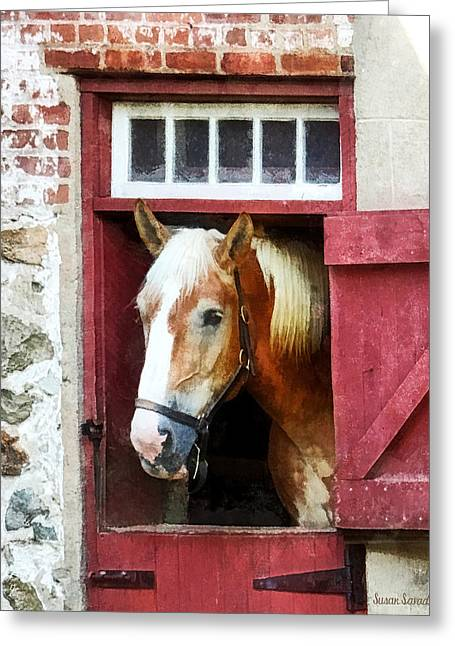 Palomino By Barn Door Greeting Card by Susan Savad
