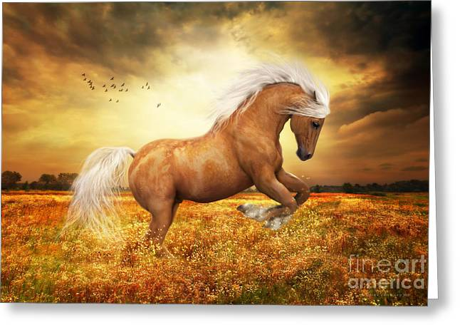 Hoofs Greeting Cards - Palomino Horse Sundance  Greeting Card by Shanina Conway