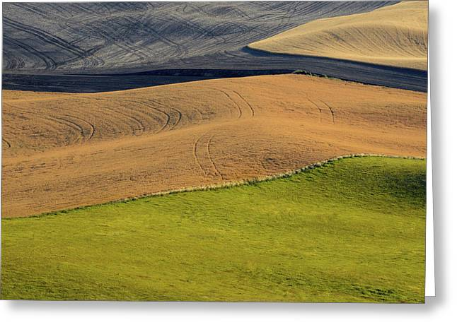 Usa Photographs Greeting Cards - Palouse Abstract Greeting Card by Latah Trail Foundation