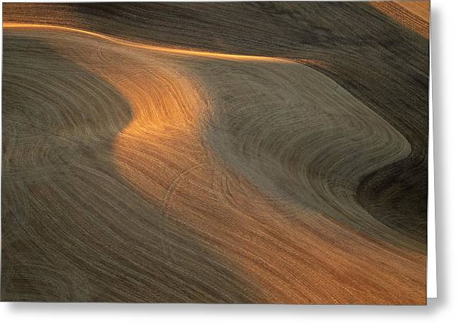 Contour Plowing Greeting Cards - Palouse Contours II Greeting Card by Latah Trail Foundation
