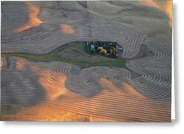 Contour Plowing Greeting Cards - Palouse Contours III Greeting Card by Latah Trail Foundation