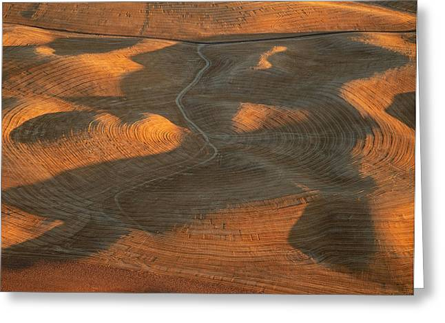 Contour Plowing Greeting Cards - Palouse Contours IV Greeting Card by Latah Trail Foundation