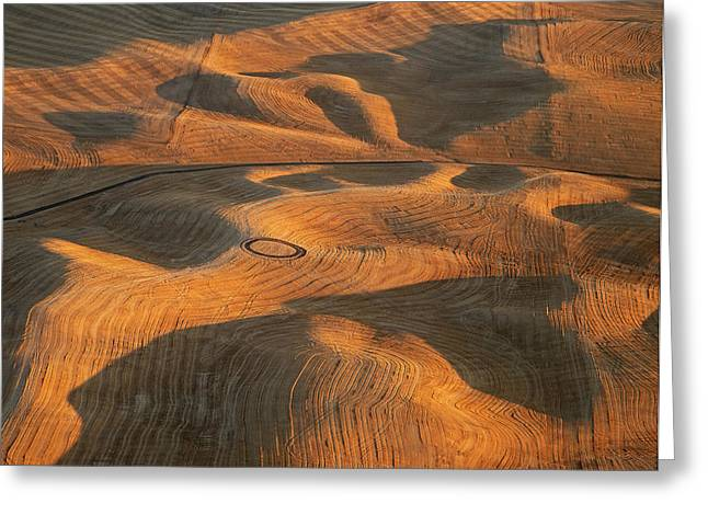 Contour Plowing Greeting Cards - Palouse Contours V Greeting Card by Latah Trail Foundation