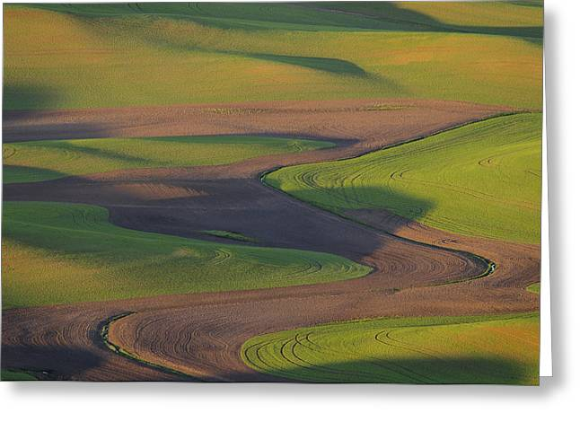Contour Plowing Greeting Cards - Palouse Curves Greeting Card by Greg Vaughn