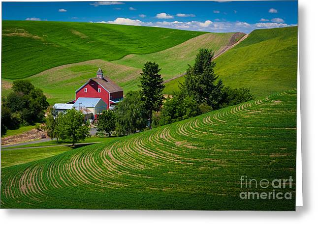 Rural Scenery Greeting Cards - Palouse Farm Landscape Greeting Card by Inge Johnsson