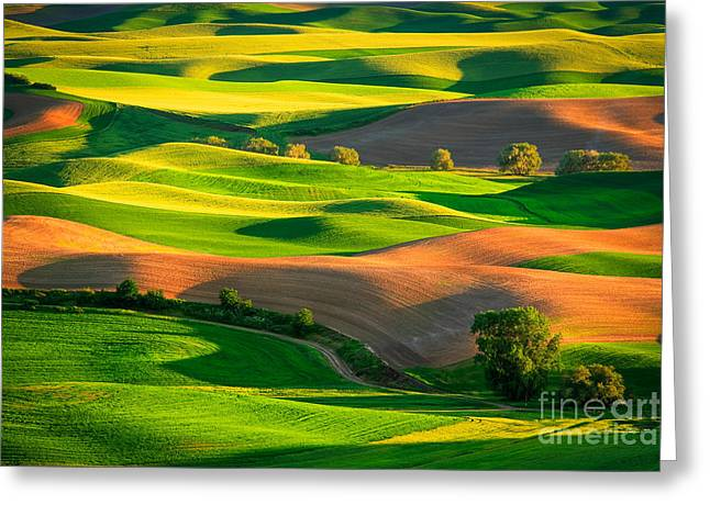 Rural Scenery Greeting Cards - Palouse Fields Greeting Card by Inge Johnsson