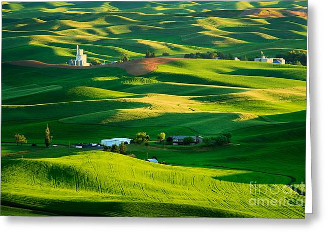 Silo Greeting Cards - Palouse Green Sea Greeting Card by Inge Johnsson