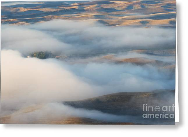 Palouse Morning Mist Greeting Card by Mike  Dawson