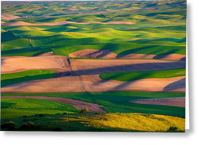 Rural Scenery Greeting Cards - Palouse Ocean of Wheat Greeting Card by Inge Johnsson