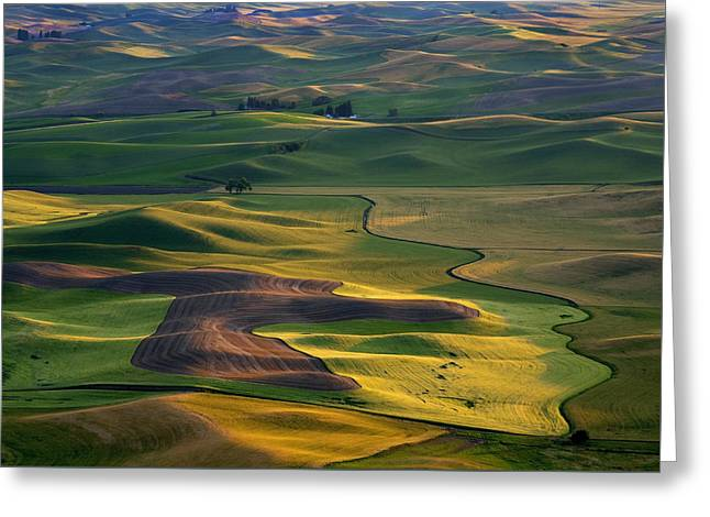 Crops Greeting Cards - Palouse Shadows Greeting Card by Mike  Dawson